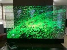 LED玻璃橱窗屏